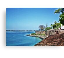 osj wall Canvas Print