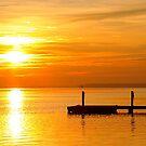 Pamlico River Sunshine by JGetsinger
