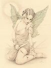 """Fairy Warrior"" Colour Pencil Artwork by John D Moulton"