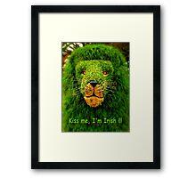 Kiss Me, I'm Irish !!! Framed Print