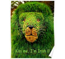 Kiss Me, I'm Irish !!! Poster