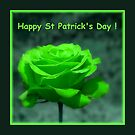 Happy St Patrick's Day ! by artisandelimage