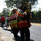 The Novitiate Parade by Trishy