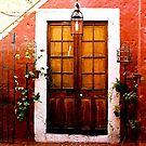 Door in Arequipa Peru by TerrillWelch