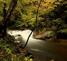 Laurel Creek Cascade by kathy s gillentine