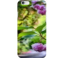 Spring Colours - Mt Wilson NSW iPhone Case/Skin