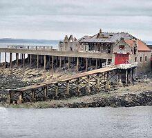 RNLI Birnbeck Island . by Lilian Marshall