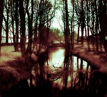 Eerie Lake - Audley End Park by Kiwi Gibbons