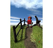 Little Red Robot Photographic Print