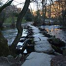Tarr Stepps....Exmoor...Britian! by greenstone