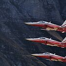 Northrop F-5E Tiger II; Patrouille Suisse by Ted Lansing