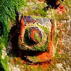 Rusted shoreline bolt by INFIDEL