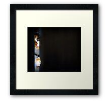 sneaky Framed Print