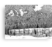 Lower Ground Canvas Print