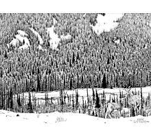 Lower Ground Photographic Print
