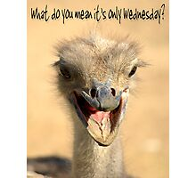 What do you mean it's only Wednesday? Photographic Print