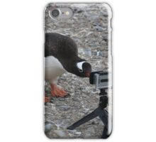 Gentoo Penguin in Antarctica & Go Pro  iPhone Case/Skin
