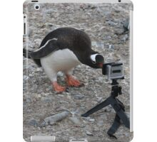 Gentoo Penguin in Antarctica & Go Pro  iPad Case/Skin