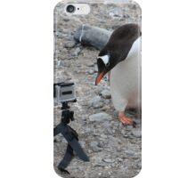 Gentoo Penguin in Antarctica & Go Pro - 3 iPhone Case/Skin