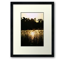Afternoon at Virginia Water Framed Print