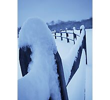Fence Frosting Photographic Print