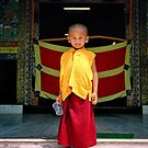 future buddha. northern india by tim buckley | bodhiimages photography