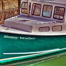 Stormy Weather  by Monica M. Scanlan