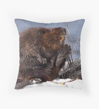 Be Wary Of Giant Rodents That Smile And Wave Throw Pillow