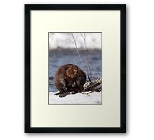 They Take Wooden Nickles Framed Print