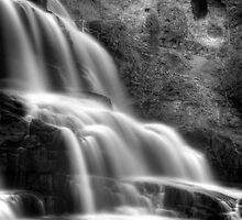Gooseberry Falls in mono by Angela King-Jones