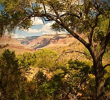 Indian Garden - Grand Canyon Arizonia by Rick Ruppenthal