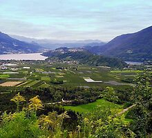 Lakes Caldonazzo and Levico (Italy) by sstarlightss
