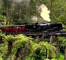 Narrow Gauge Garratt Steam Locomotive by Christopher Biggs