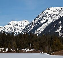 Cascade Mountains, Snoqualmie Pass by Barb White