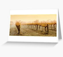 Wet Vineyard Greeting Card