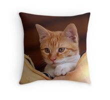 cute little kitty Throw Pillow