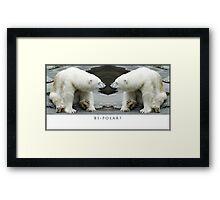 Bi-Polar Framed Print