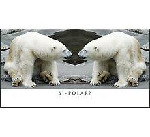 Bi-Polar Photographic Print