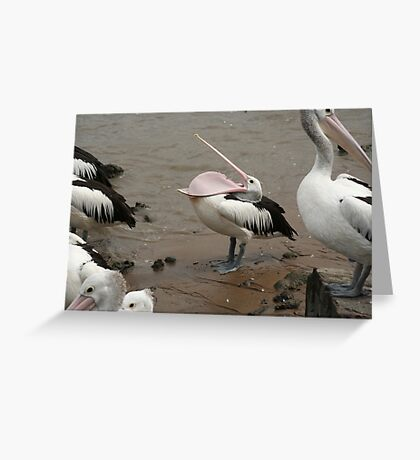 pelican being silly Greeting Card