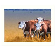 Cows in the grass Art Print