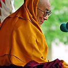 HH Dalai Lama. pin valley, northern india by tim buckley | bodhiimages