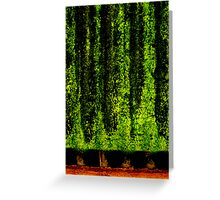 Screen Trees Greeting Card
