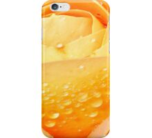 Sunshine and Showers iPhone Case/Skin