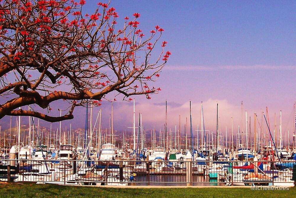 Santa Barbara, USA, Harbour by MichelleRees