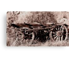 Roadside Casualty Canvas Print