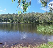 Sheba Dams, Hanging Rock (Nundle) NSW by Bev Woodman
