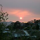 Lenah Valley Sunrise by Derwent-01