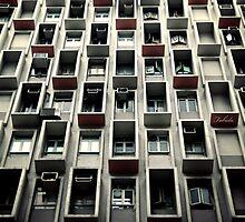 Window Boxes by fabiela