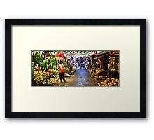 Banana Kingdom Framed Print