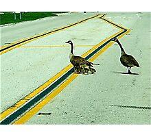 Family Walk Photographic Print